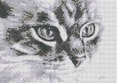 Алмазная вышивка АВ 3017 25,3*35,2см Кошка полная зашивка