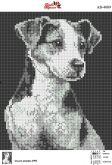 Алмазная вышивка АВ 4009 19*23см Пес полная зашивка