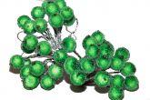 Калина сахарная зеленая