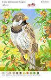Схема для вышивки бисером   СВ 5121 Птичка