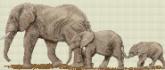 Алмазная вышивка Пано АП 05 20см*46,8см Слоны полная зашивка